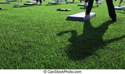 aérobie, engagé, étape, masse, ombre, herbe, girl, exercice