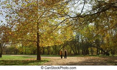 aînés, marche, parc