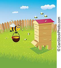 abeilles, ruche