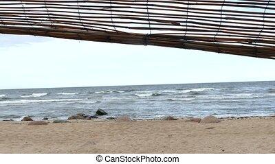 abri, hutte, plage, improvisé, bois flottant