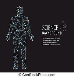 adn, symbole, molécule, génétique, adn, structure, homme