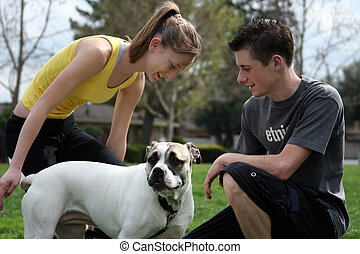 adolescents, chien
