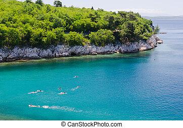 adriatique, vert, mer, natation