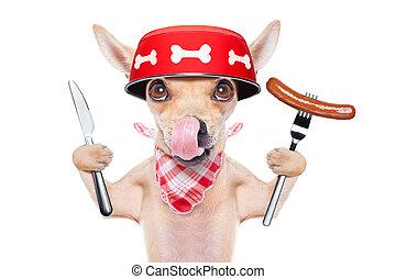 affamé, cuvette chien