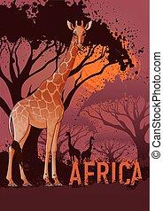 affiche, voyage, afrique