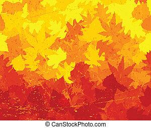 affligé, feuilles automne, papier peint
