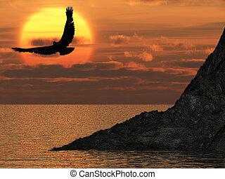 aigle, fantastique, coucher soleil