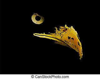 aigle, graphique, silhouette, croquis, prédateur