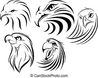 aigle, set1