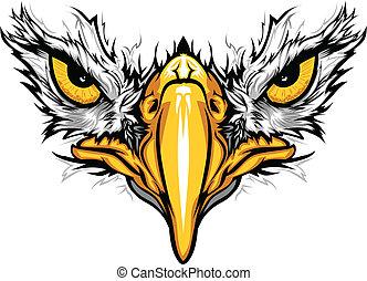 aigle, yeux, vecteur, illustration, bec