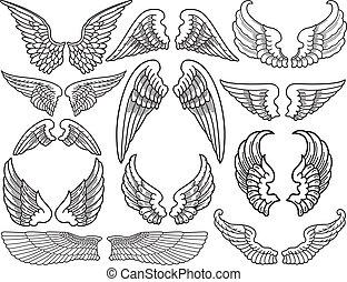 ailes, ange