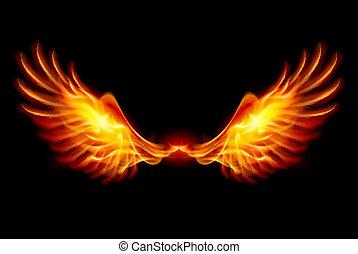 ailes, brûlé