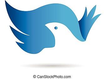 ailes, vecteur, logo, bue, oiseau, icône