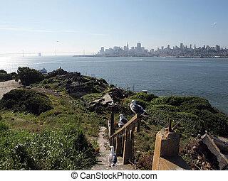 alcatraz, coin préféré, san, escalier, île, mouettes, cassé, horizon, francisco, occidental, distance.