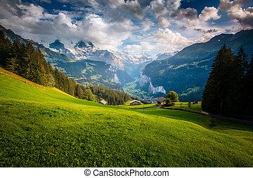 alpes, alpin, lauterbrunnen, majestueux, wengen, emplacement, village., suisse, europe., vallée, vue