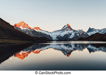 alpes, suisse, bachalpsee, lac