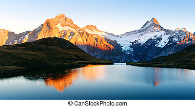 alpes suisses, bachalpsee, lac