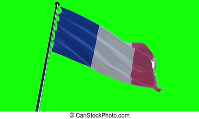 alpha, drapeau, france, greenscreen