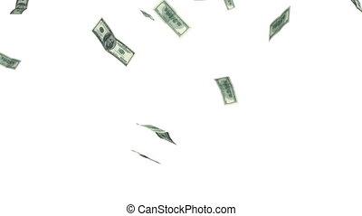alpha, mask., hd., falling., dollars