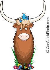alphabet, animal, yak