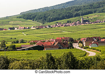 (alsace), panorama, itterswiller, -
