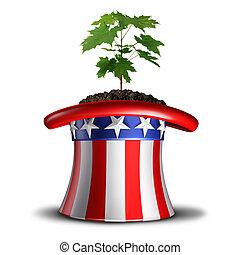 américain, concept, croissance