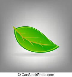 ambiant, vecteur, plant., illustration, icône