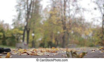 amour, romantique coupler, parc, automne, date