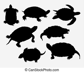 amphibie, tortue, silhouette