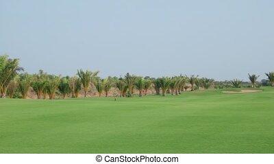 amusement, golf, jouer, mari, épouse