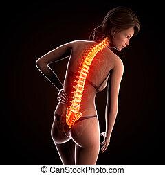 anatomie, douleur, dos, femme