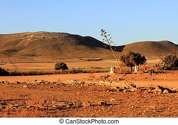 andalousie, paysage