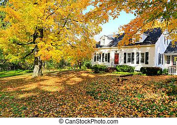 angleterre, classique, maison, américain, fall., extérieur, nouveau, pendant