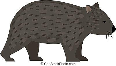 animal, australien, exotique, wombat