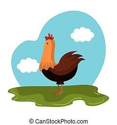animal, ferme, poulet, champ