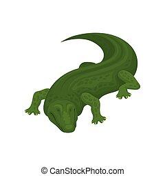 animal, illustration, crocodile, vecteur, amphibie, fond, blanc