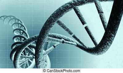 animation, génétique, dna., 4k, loop-able