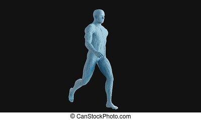animation, homme, 3d, imprimé, marche