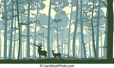 animaux sauvages, illustration, wood.
