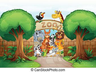 animaux, zoo