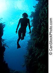 antilles, freediver