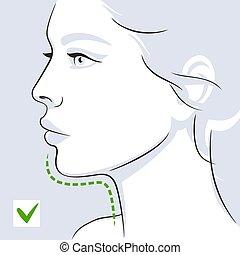 après, femme, double, profil, illustration, menton, vecteur, figure