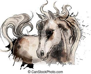 aquarelle, mignon, peu, peinture, cheval