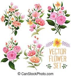 aquarelle, vendange, fleur, tas