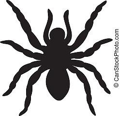 araignés, vecteur