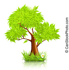 arbre, 10eps, vert