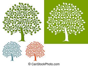 arbre chêne