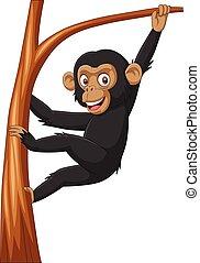 arbre, chimpanzé, branche, pendre, bébé, dessin animé