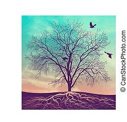 arbre, coucher soleil, hiver