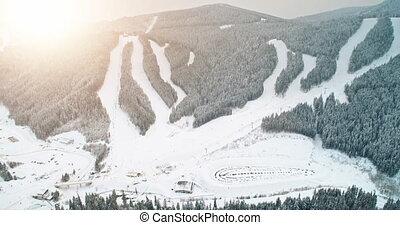 arbre, coucher soleil pin, pente, forêt, vue., bukovel, recours, montagne, aérien, ski, ukraine, neige, carpathian.